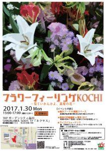 20170130kochi