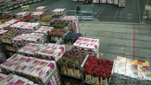 オランダアールスメール市場を通って日本へ