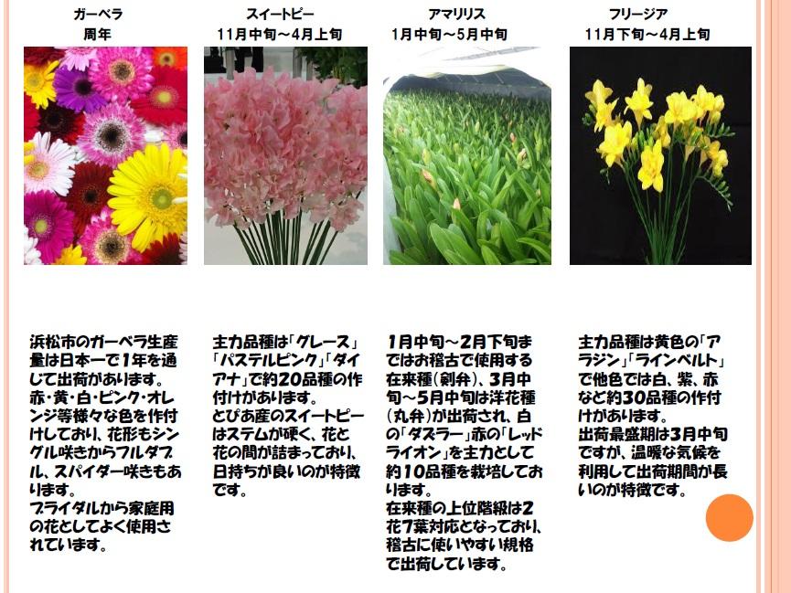 JAとぴあ浜松 花き商品提案5