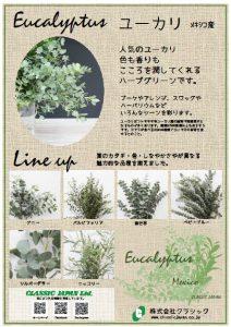 eucalyptus2017