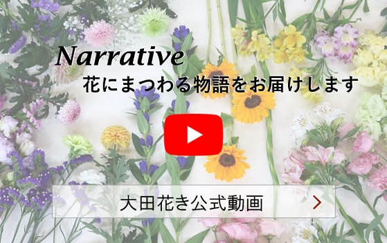 商品開発部 動画サイト