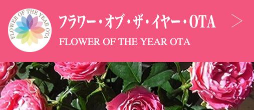フラワー・オブ・ザ・イヤー・OTA FLOWER Of THE YEAR OTA