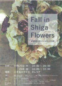 fall in shiga flowers 2018