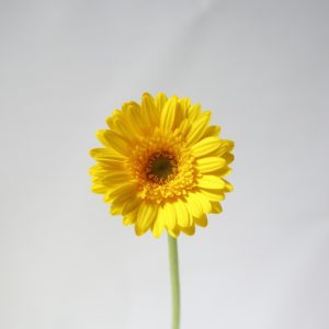 190408C417