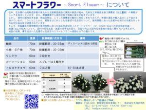 Smart Flower02