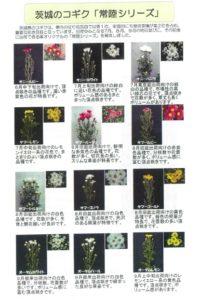 hitachi2019