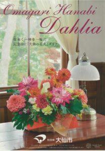 daisendahlia2019