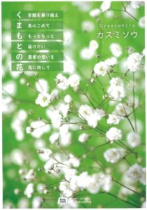 kumamoto56