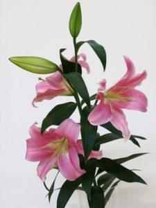 200608nakamura235