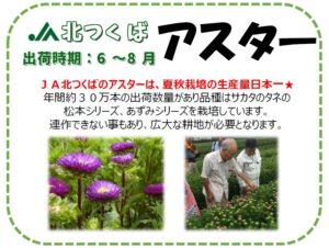 2020kitatsukuba_POP_38