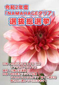 NAMAHAGE2020-1
