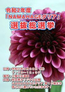 NAMAHAGE2020-2