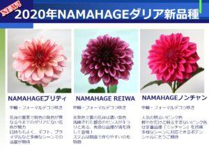 NAMAHAGE2020_new