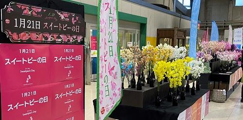 Live_20210118_01