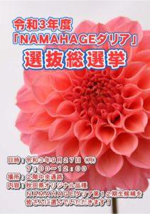 NAMAHAGE21_1