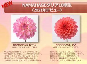 2021debut_namahage